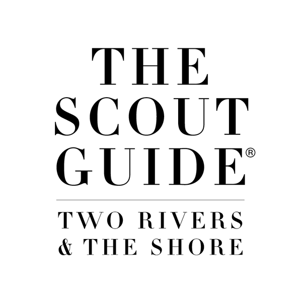Scout guide